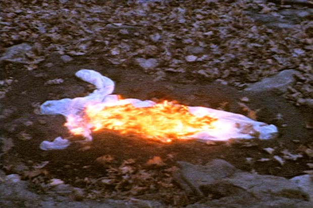 Ana Mendieta: stillbild, Alma Silueta en Fuego (Silueta de Cenizas), 1975, 3:07 min. Courtesy Galerie Lelong, New York.