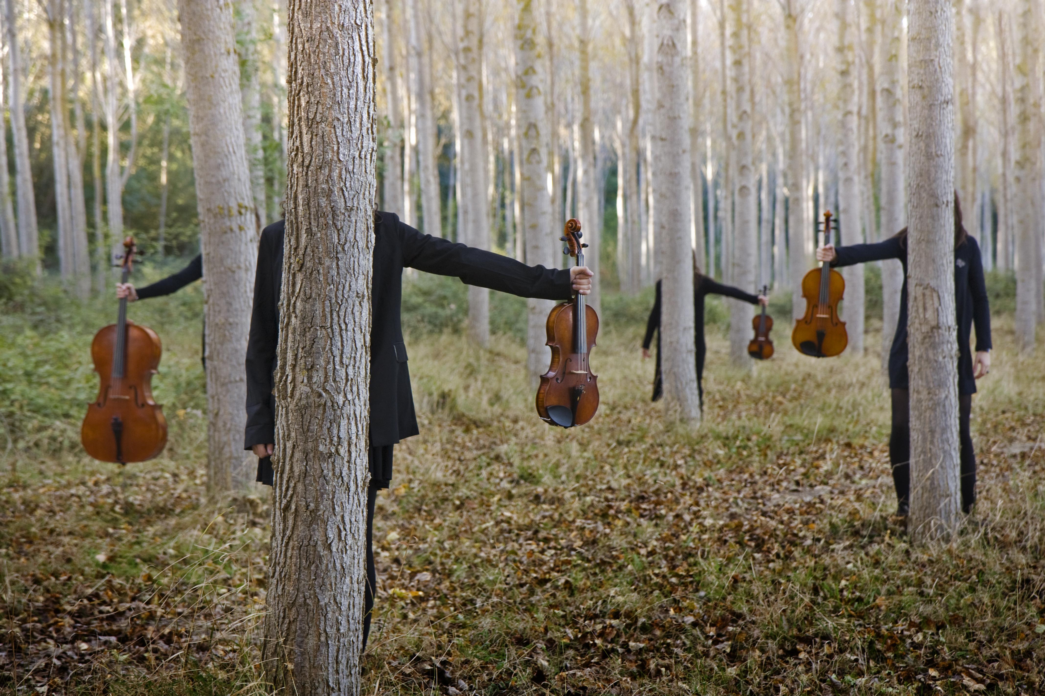 Camerata Nordica vinjettbild