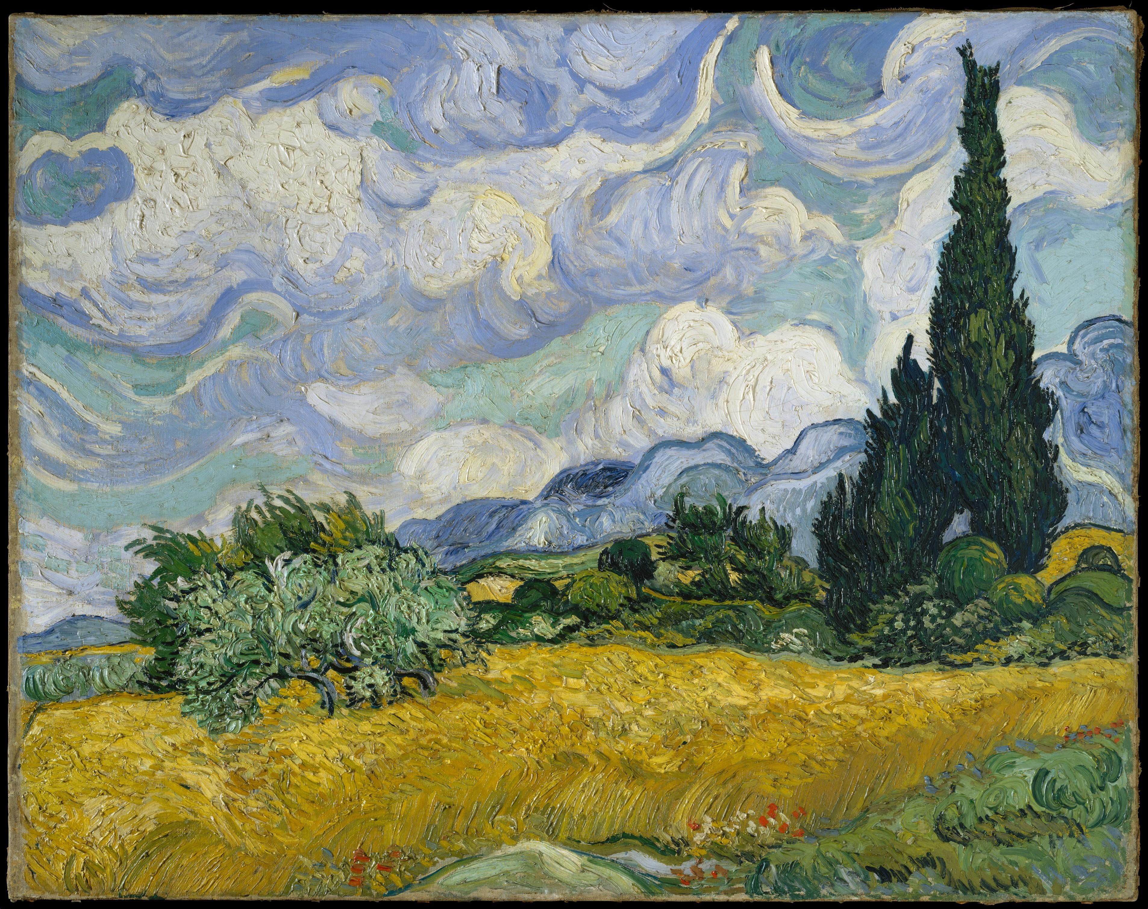 Van Goghs Vetefält med Cypresser