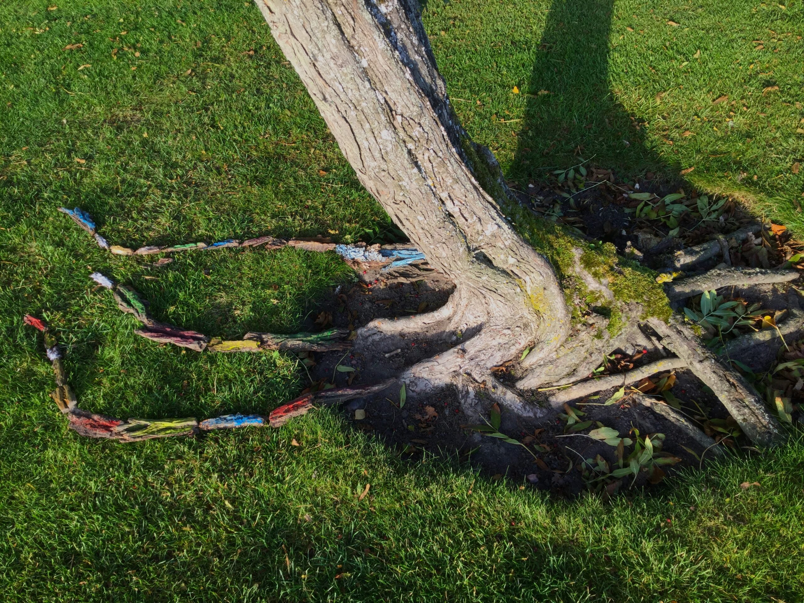 Ett träd med målade rötter